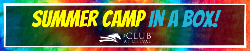 Cheval Kids Summer Camp In A Box
